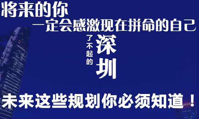 深圳市人民政府关于大力推进大众创业万众创新的实施意见